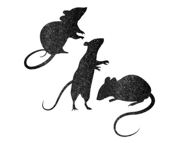Dekoracje wycinane Szczury brokatowe, 1 op