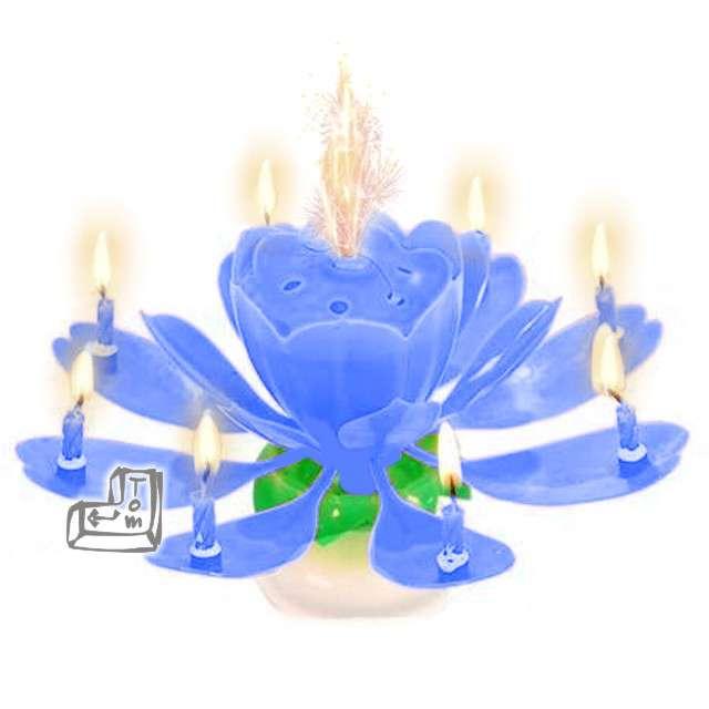 Świeczka kwiatek grający HAPPY BIRTHDAY niebieska