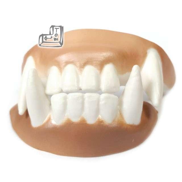 Sztuczne zęby, wzór 8