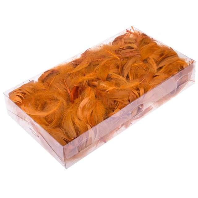 Piórka dekoracyjne, brązowe jasne, pudełko