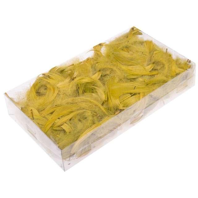 Piórka dekoracyjne, oliwkowe, pudełko