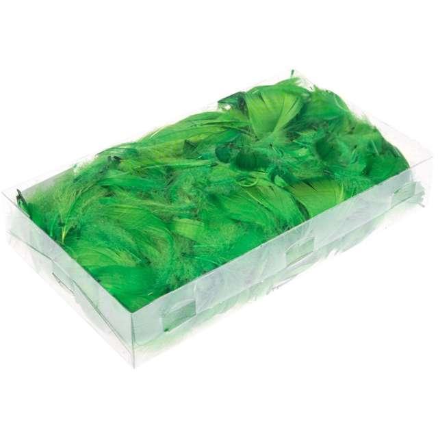 Piórka dekoracyjne, zielone, pudełko