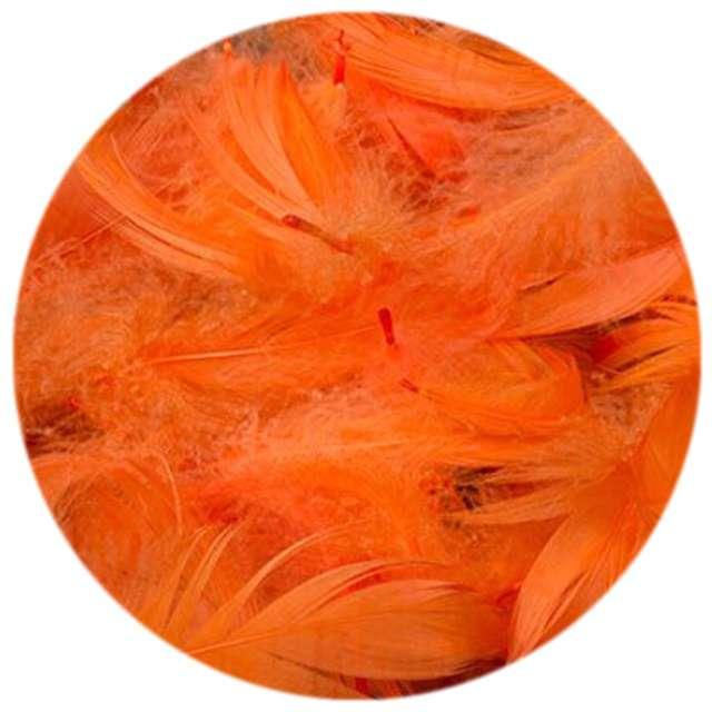 Piórka dekoracyjne, pomarańczowe, woreczek