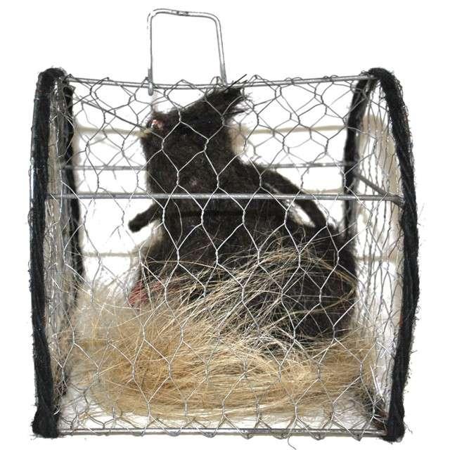 """Dekoracja """"Szczur w klatce"""", FunnyFashion, 16x15 cm"""