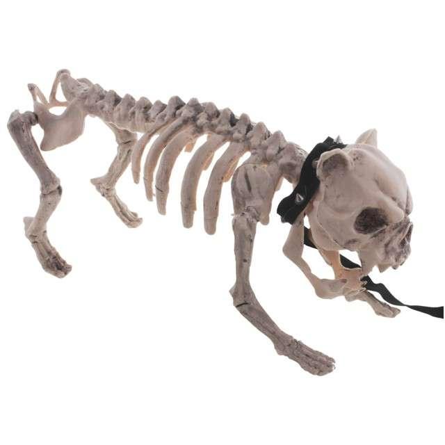 """Dekoracja """"Szkielet Psa - Buldog"""", FunnyFashion, 43 cm"""