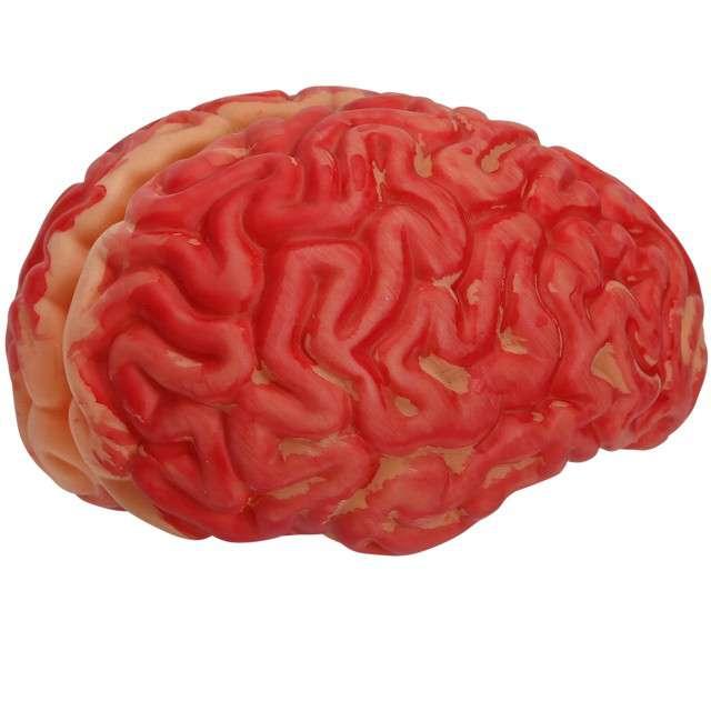 "Dekoracja ""Mózg"", WIDMANN"