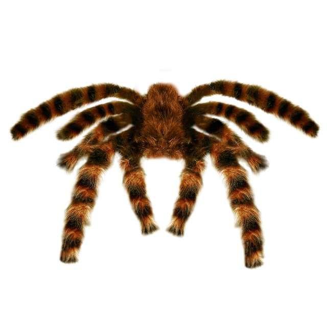 "Dekoracja ""Pająk - Tarantula"", WIDMANN, 65 cm"
