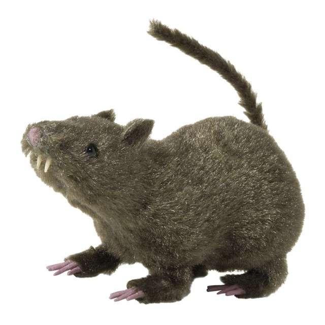 """Dekoracja """"Szczur"""", WIDMANN, 21 cm"""