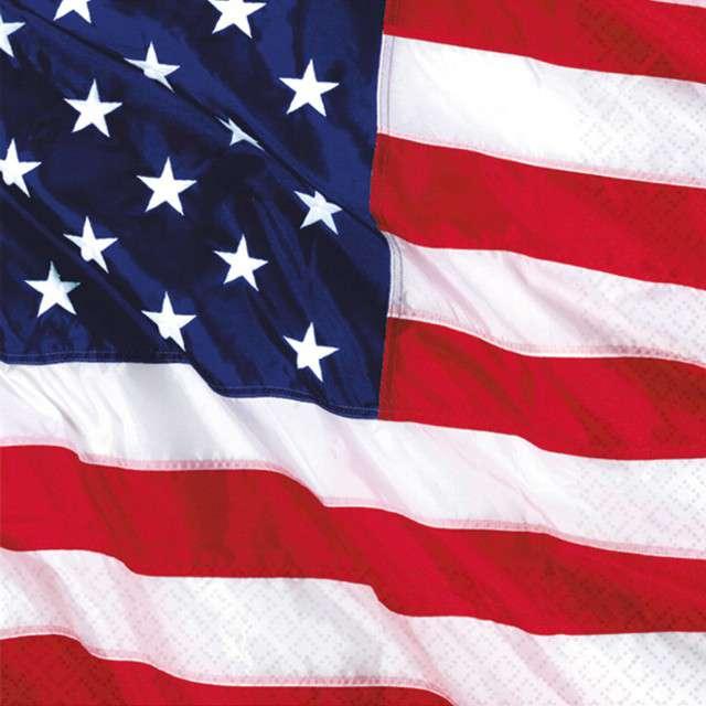"""Serwetki """"USA - Stany Zjednoczone"""", AMSCAN, 33 cm, 16 szt"""