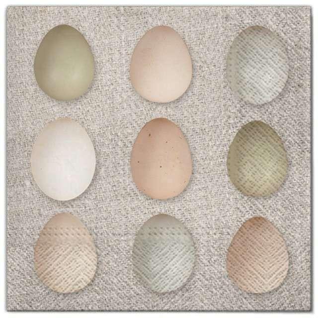 """Serwetki """"Wielkanoc - jajka mozaika"""", Maki, 33 cm, 20 szt"""
