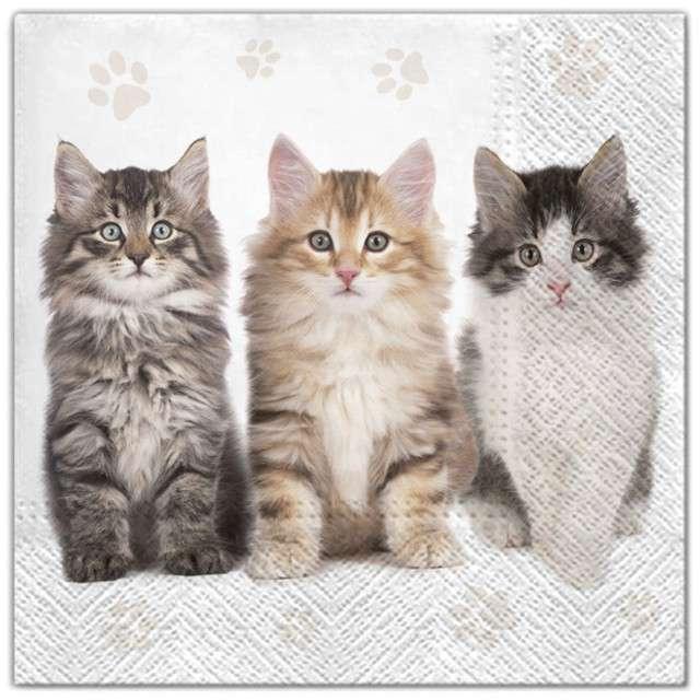 """Serwetki """"Kotki trzy"""", Maki, 33 cm, 20 szt"""