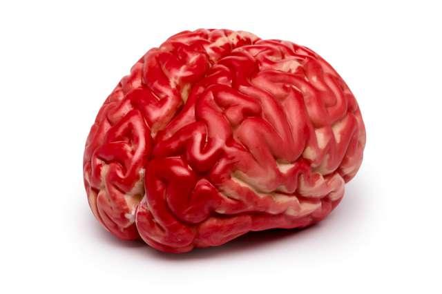 """Dekoracja """"Sztuczny mózg"""", GadgetMaster"""