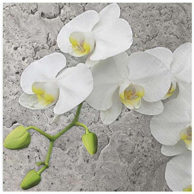"Serwetki ""Biała orchidea na szarym tle"", MAKI, 33 cm, 20 szt"