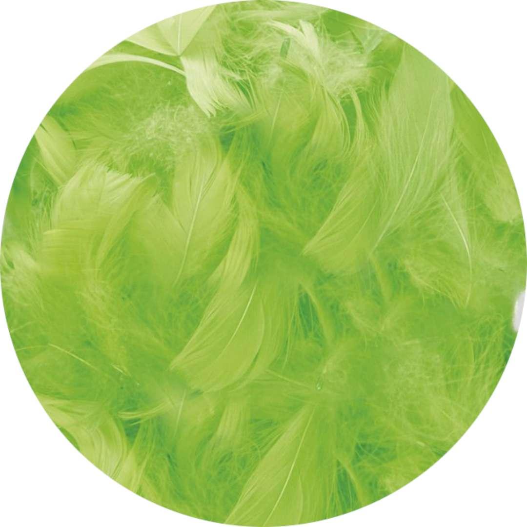 """Piórka dekoracyjne """"Classic"""", zielone jabłuszko, Titanum, 16 g"""