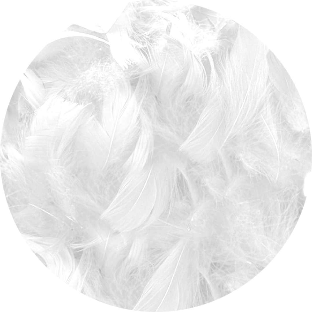 """Piórka dekoracyjne """"Classic"""", białe, Titanum, 16 g"""