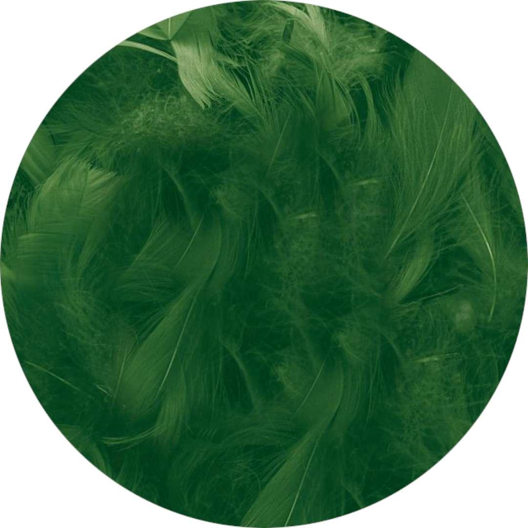 "Piórka dekoracyjne ""Classic"", zielone ciemne, Titanum, 16 g"