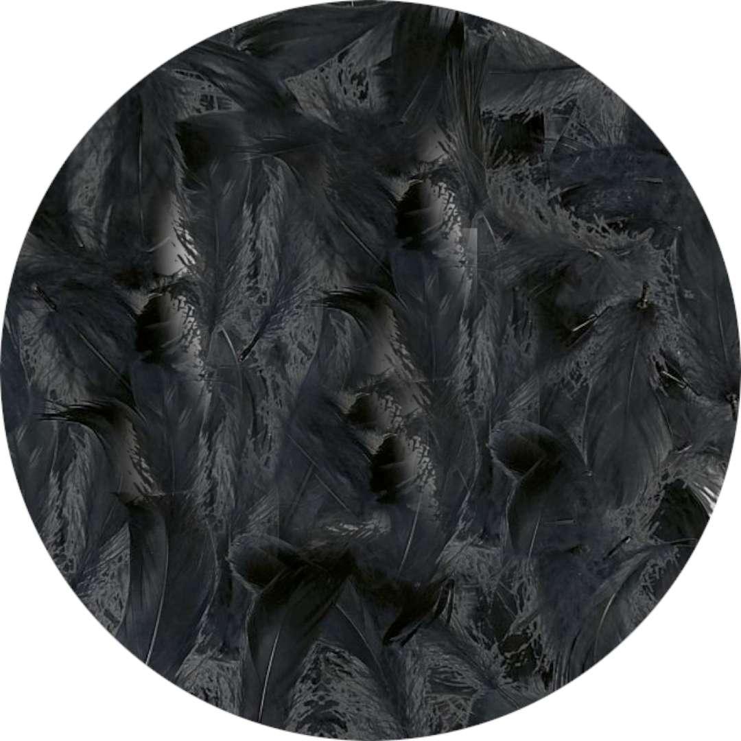 "Piórka dekoracyjne ""Classic"", czarne, Titanum, 16 g"