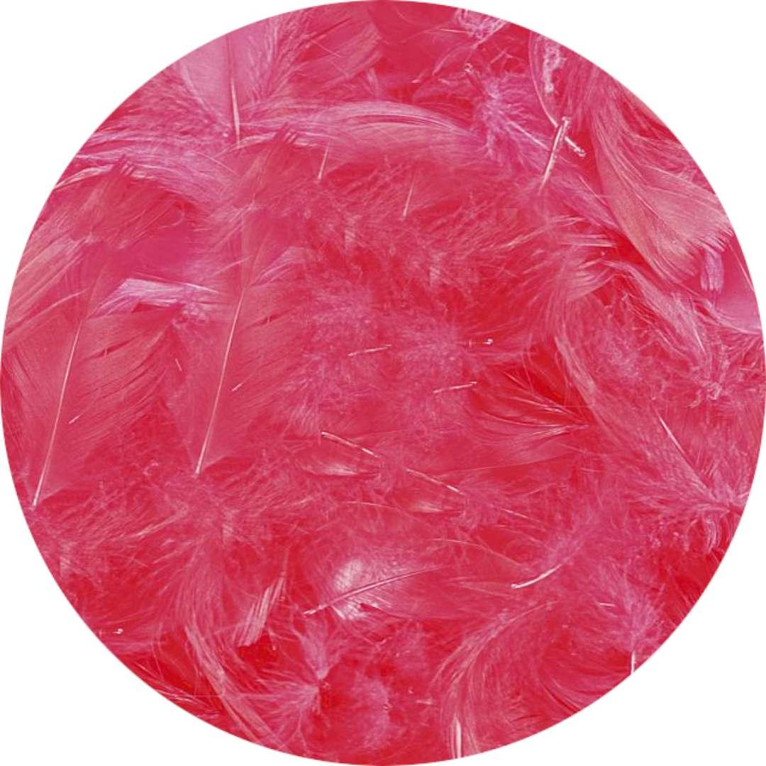 """Piórka dekoracyjne """"Classic"""", czerwone, Titanum, 16 g"""