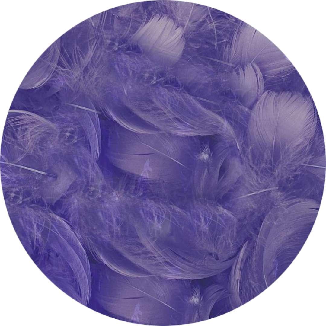 "Piórka dekoracyjne ""Classic"", fioletowe, Titanum, 16 g"
