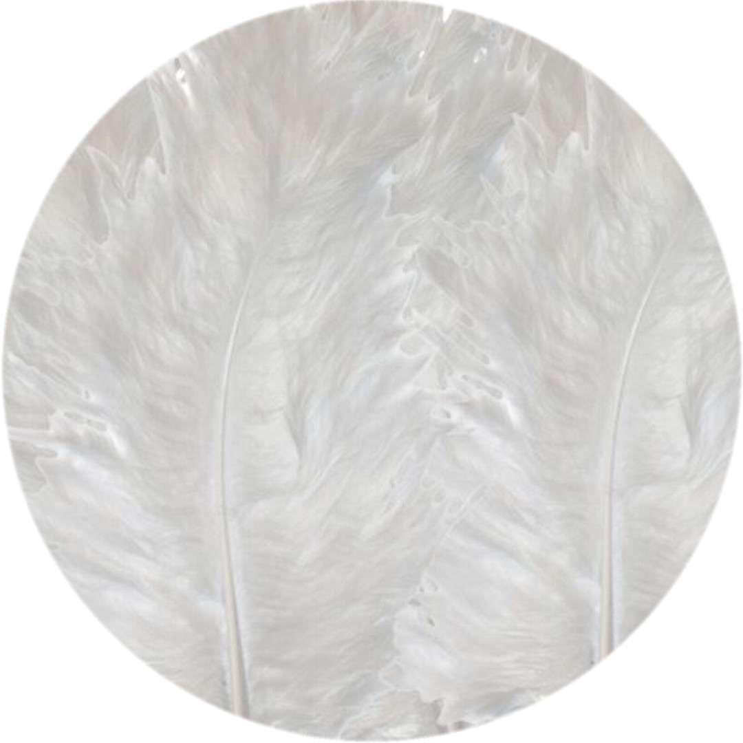"""Piórka dekoracyjne """"Classic"""", białe, Titanum, 50 szt"""
