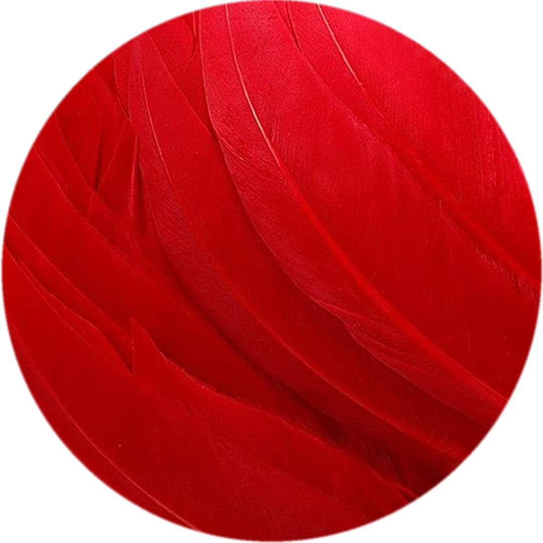 """Piórka dekoracyjne """"Lotki"""", czerwone, Titanum, 16 g"""