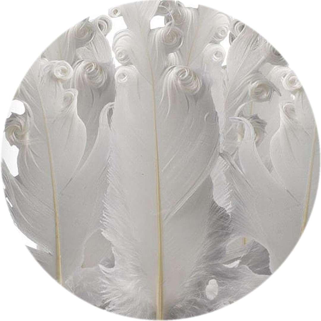 """Piórka dekoracyjne """"Kręcone"""", białe, Titanum, 16 g"""