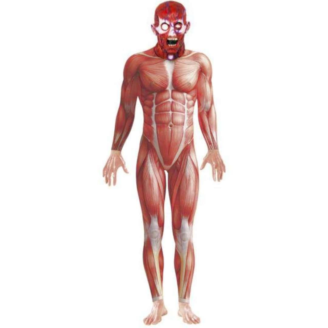 Strój dla dorosłych Anatomiczny Smiffys rozm. L