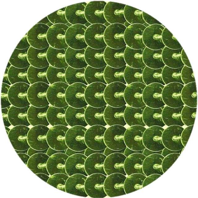 """Cekiny """"Na sznurku"""", zielone, 6 mm, Titanum, 2 m"""