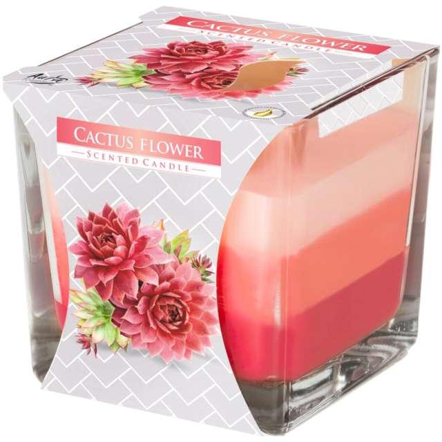 """Świeca zapachowa w szkle """"Trójbarwna Kwiat kaktusa"""", Bispol, 8x8 cm"""