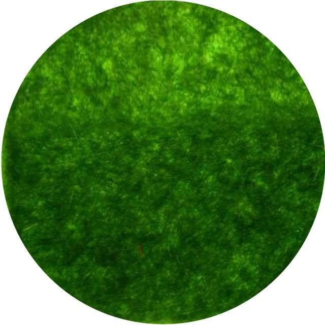 """Ozdoba """"Trawa sztuczna"""", zielona, Aliga, 15x15cm, 2szt"""