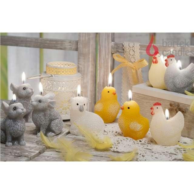 Świeca Wielkanoc - pisklak Bartek Candles 70 mm