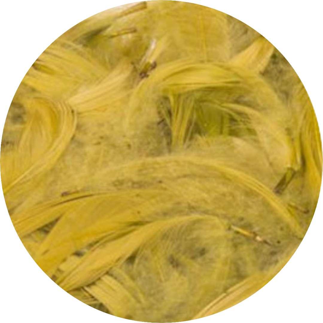 Piórka dekoracyjne, oliwkowe, Czakos, 10 g