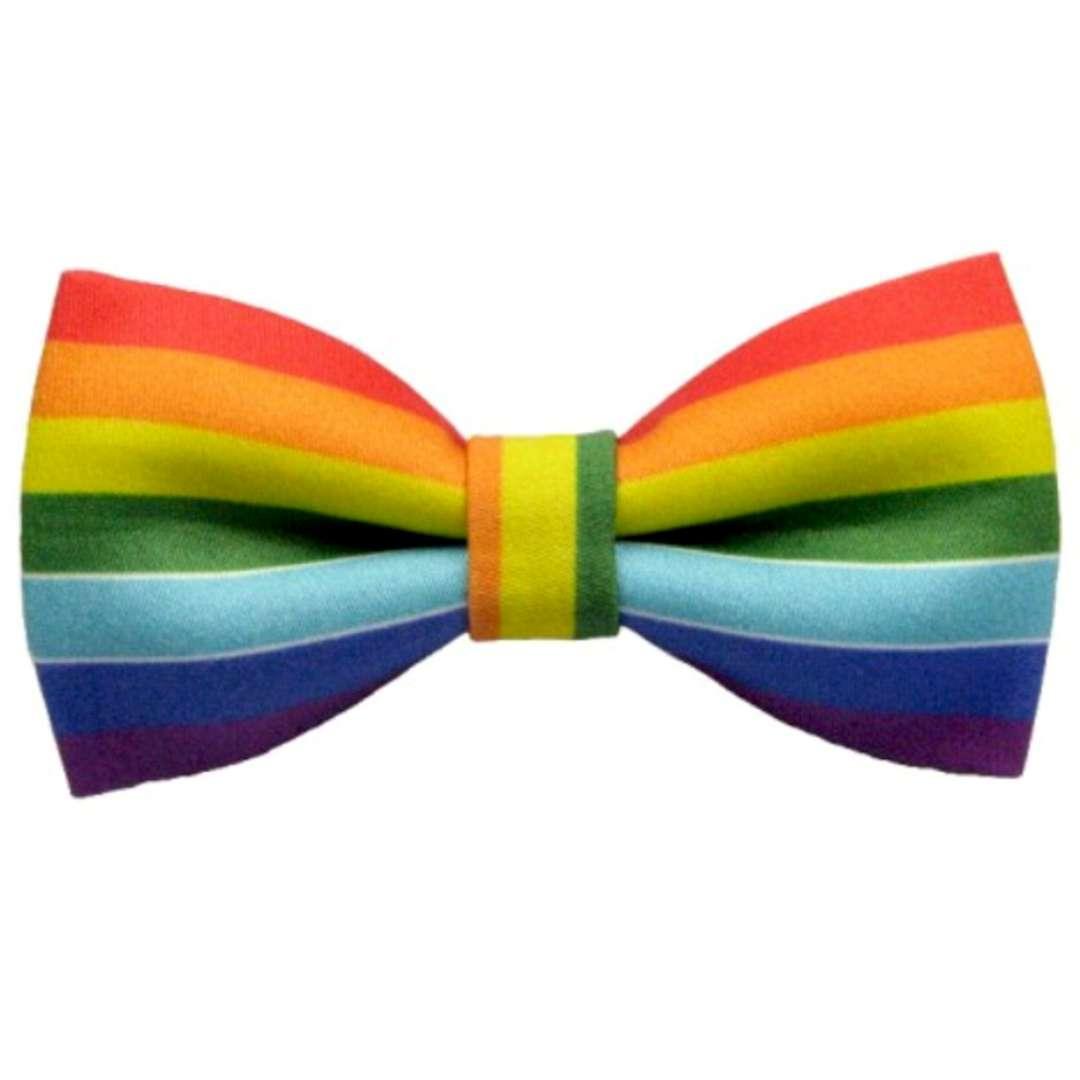 Mucha Rainbow tęczowa Smiffys