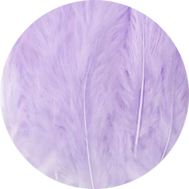 """Piórka dekoracyjne """"Długie"""", fioletowe, PartyPal, 10-15 cm, 50 szt"""