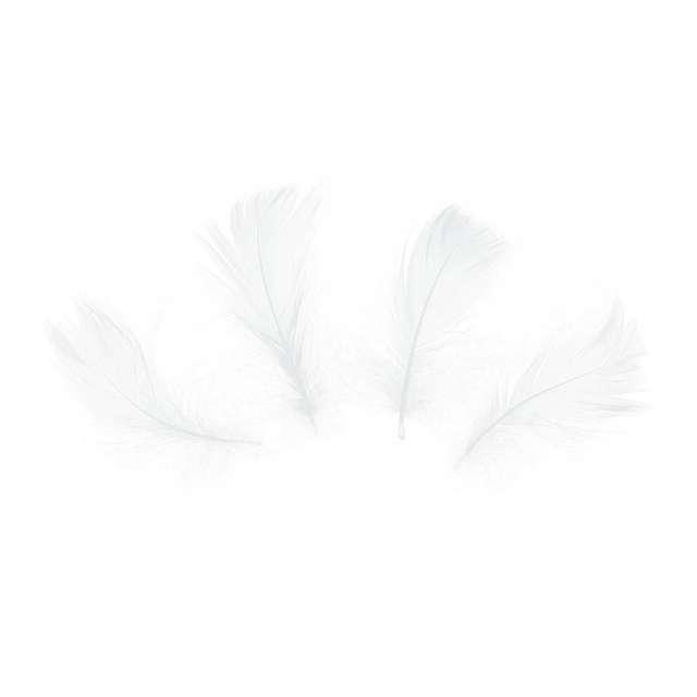 Piórka dekoracyjne Krótkie białe PartyPal 5-8 cm 50 szt