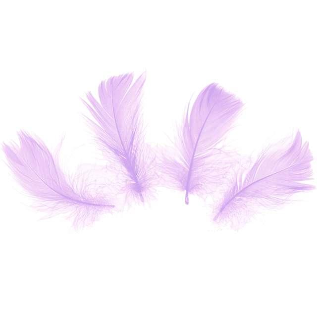 Piórka dekoracyjne Krótkie fioletowe PartyPal 5-8 cm 50 szt