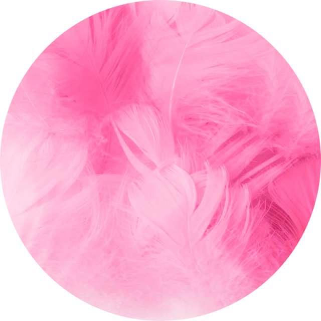 """Piórka dekoracyjne """"Krótkie"""", różowe, PartyPal, 5-8 cm, 50 szt"""