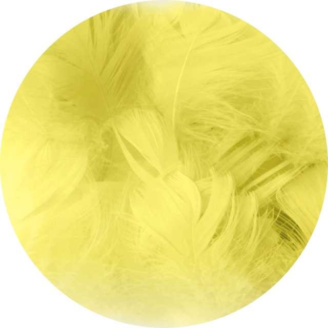 """Piórka dekoracyjne """"Krótkie"""", żółte, PartyPal, 5-8 cm, 50 szt"""