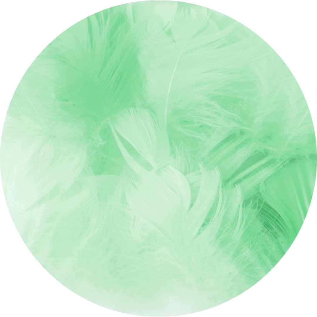 """Piórka dekoracyjne """"Krótkie"""", zielone, PartyPal, 5-8 cm, 50 szt"""