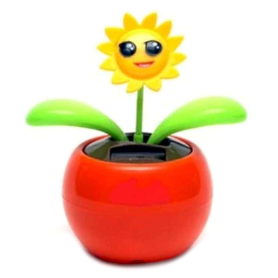 Kwiatek solarny Tańczące Słoneczko mix 10cm