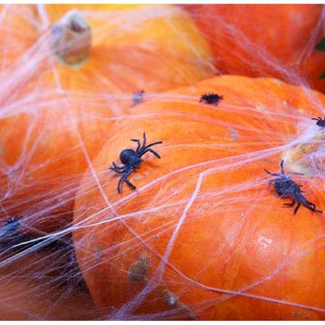 Dekoracja Pajęczyna z pająkiem biała Carnival Toys 20 g